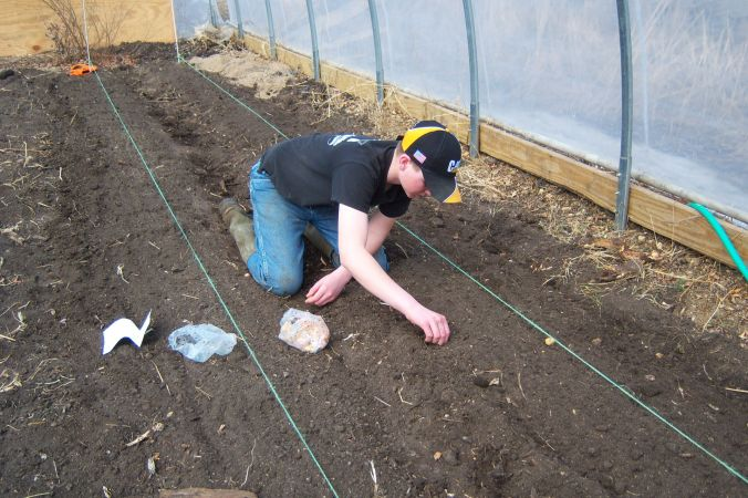 Heres Jordan planting onions. The soil is so soft you just push the bulbs in and pack!