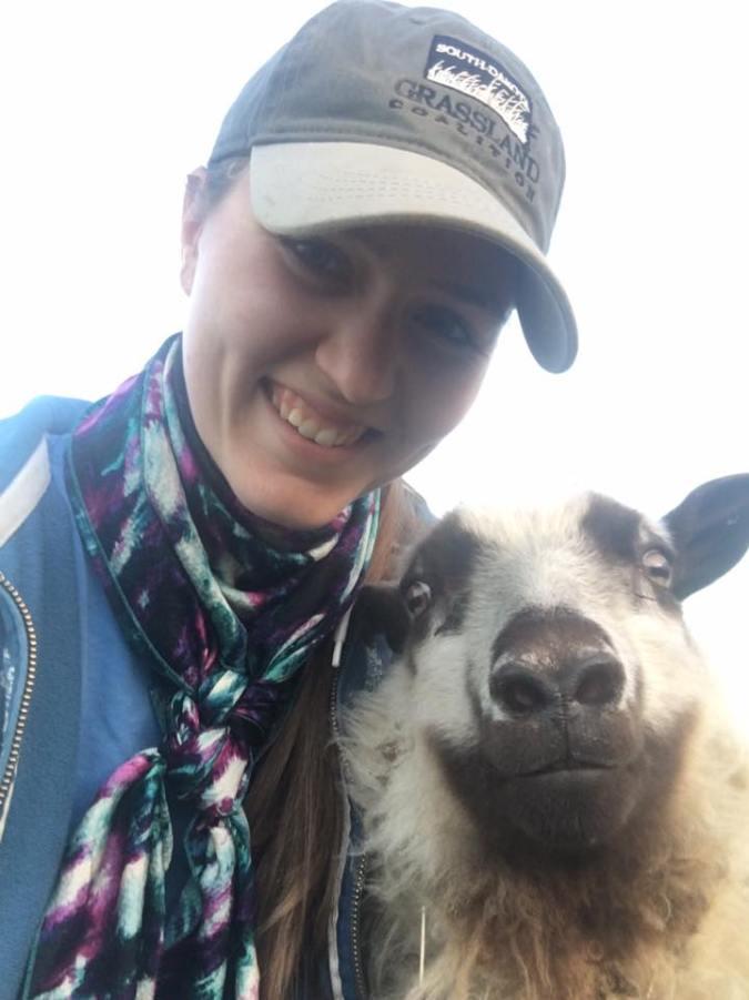 smiling-sheep