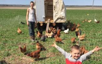Pastured chickens!